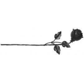 Ozdobná ruža