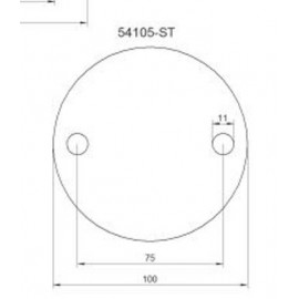Kotviaca platnička 100 x 6 mm